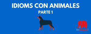 Idioms con animales