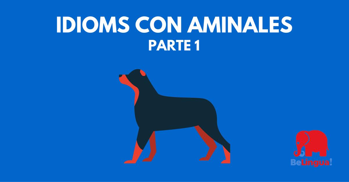 Idioms con animales (1ª parte)