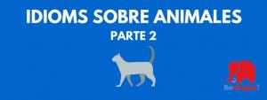 Idioms sobre animales