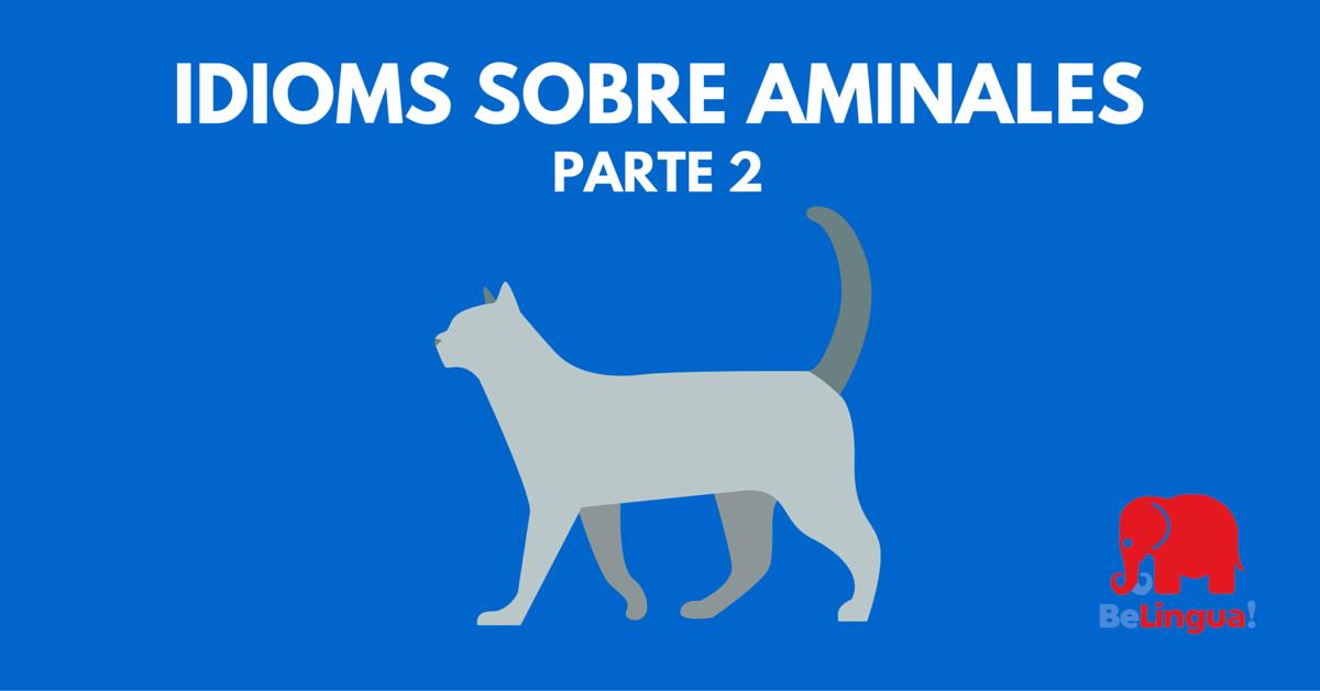 Idioms sobre animales (2ª parte)