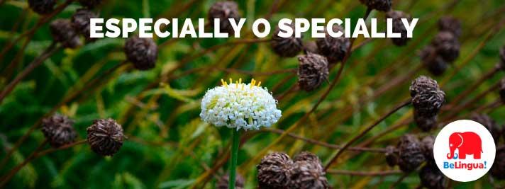 especially o specially